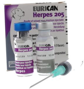 Herpes-Eurican VSFL